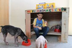 animal shelters, garag, anim shelter, dog