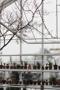 FleaingFrance Brocante Society Winter garden