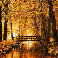 The Bridge in the Fall <3