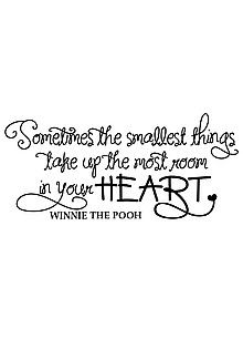 """""""Sometimes the smallest things take up the most room in your heart"""" -Winnie the Pooh"""