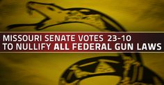 "Missouri senate votes to nullify all federal gun control measures, whether ""past, present, or future"""