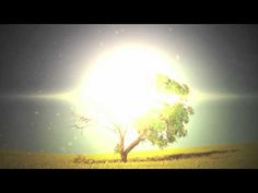 MercyMe - The Hurt & The Healer (Official Lyric Video)