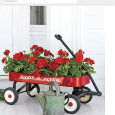 I've got the radio flyer, who's got the geraniums? Love this and have been holiding on to a hand me down wagon when these were still made in the usa!