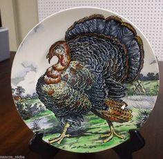 Midwinter Polychrome Black Transferware Turkey Plate Staffordshire.