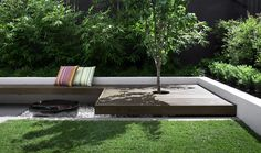 Clean lines and a simple palette of plants with different textures define this small courtyard garden. An outdoor room entertaining space and different levels provide easy living and a valuable asset that will grow and improve with time. Outdoor Rooms