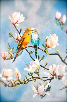 Parakeet Love Birds Vintage Wall Art Framed Print by Pamplepluie, $26.00