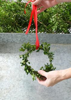 DIY Mini Boxwood Wre