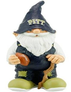 Pittsburgh Panthers - gnome