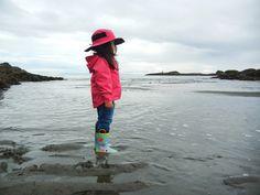 """""""Making Montessori Ours"""": Shell & Sea Shore Exploration Unit"""
