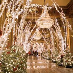 Roosevelt Hotel in New Orleans during Christmas. Gorgeous!