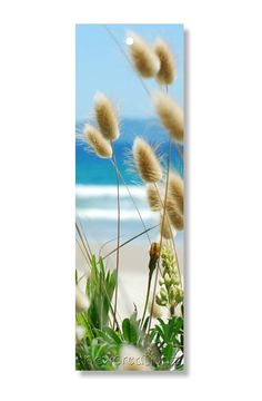 Bookmark beach grasses PRINTABLE   bunny tails  by NewCreatioNZ, $3.00
