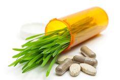 holist health, natural treatments, health care, top natur, natur health, lyme disease, natur treatment, natur prescript, medicin