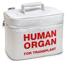 Organ Transport Lunch Cooler