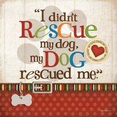 Re-pin if this holds true for you! #mustlovedogs http://www.youmustlovedogsdating.com