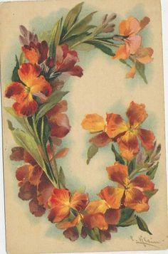 T13 1904 Postcard Catherine Klein Floral Artist Signed Alphabet Letter G | eBay