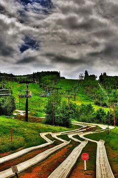 Alpine Slides - Park City, Utah