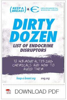 Dirty Dozen List of Endocrine Disruptors