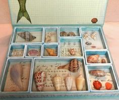 Organizing your sea shells for a beautiful display:  http://www.completely-coastal.com/2014/10/sanibel-island-shell-crafts.html