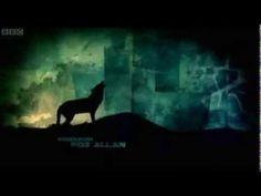 Wolf Blood Opening // Tema de entrada de la serie Wolf Blood - YouTube