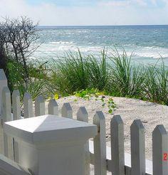 Serene Seaside Florida Gulf Coast
