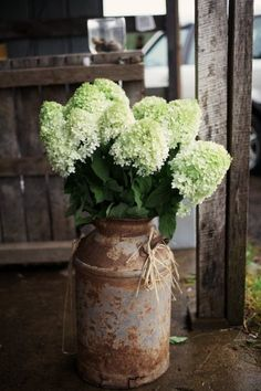 rustic milk can with white hydrangeas