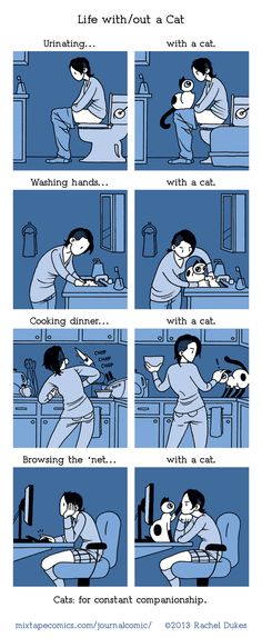 Life with and without a cat...too cute