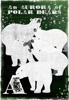 A - an Aurora of Polar Bears