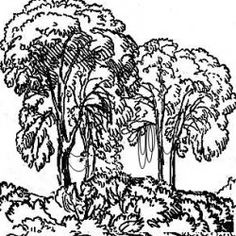 On this page you will find a growing collection of jungle coloring pages for kids. There are rainforest animal coloring pages, rainforest plant...