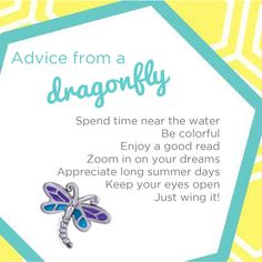 Origami Owl Dragonfly charm.  Just $5 per charm.