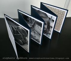 Scor-pal: An accordion album by Scor-pal guest Stephanie Washburn
