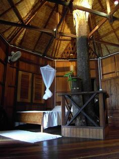 Tree House Pictures Of Inside | Powder Forest and Cerrish » inside-the-tree-house