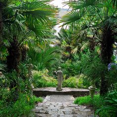 Lamorran Gardens, Cornwall, UK   A coastal garden with an eclectic mix of statuary  (1 of 11)
