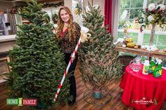 Genius!!!!! Watering Stick for Christmas tree!!!!!