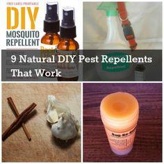9 Natural DIY Pest Repellents That Work