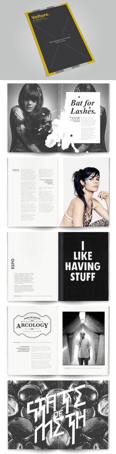 Volture Magazine