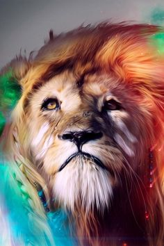 Lion Abstract Mobile