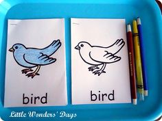 bird word, idea, preschool montessori, bird mini, mini books