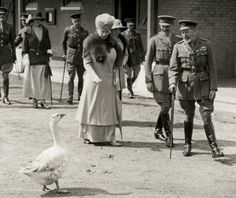 King George V and Queen Mary encounter a goose in the road