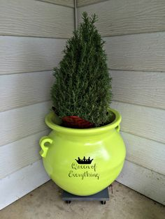 Key Lime Pot with Rosemary | Queen of Everything #yourbigfinish http://ooh.li/8d02e8e #sp