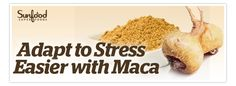 Adapt to Stress Easier with Maca