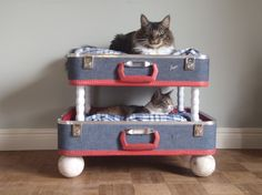cat bunk beds doll beds, cat beds, vintage suitcases, old suitcases, bunk beds, repurposed furniture, pet beds, dog beds, cat lady
