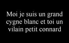 Moi je suis un grand #cygne blanc et toi un #vilain petit #connard
