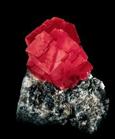 "The superb 10-cm rhodochrosite crystal on matrix pictured here, known as ""The Alma Queen,"" is among the most famous specimens in all of mineralogy. It is the best specimen recovered from a pocket found in 1965 by John Soules and Warren Good. The exceptionally large, rich red-colored crystals is perched on a crystallized matrix of quartz and tetrahedrite."