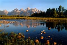 The Snake River at the Tetons - GORGEOUS! by Laurie Bray