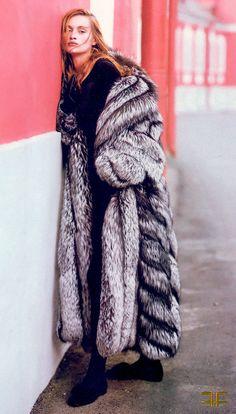 fox fur, beauti fox, fur coat, silver foxes, fur fashion, exot fur, fur fav, fabul fur