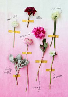 valentine floral guide for guys / designlovefest