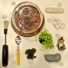 DIY Miniature Garden miniatures, fairi garden, dollhous, miniatur garden, miniatur tutori, nearsight owl, miniature gardens, craft idea, diy miniatur