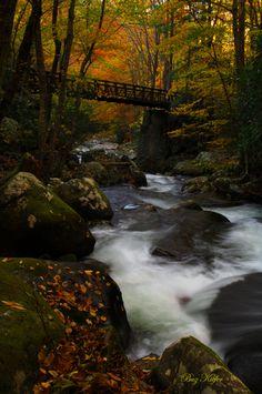 Peaceful & Beautiful! Great Smokey Mountains