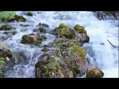 Peace Like a River - Mormon Tabernacle Choir    More LDS Gems at: www.MormonLink.com