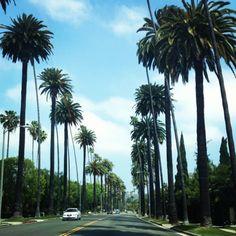 A drive through Beverly Hills